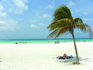 Aruba Sustainability