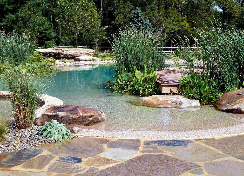 BioNova Natural Pool Green Builder