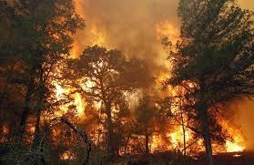 Bastrop Fire from christianpost.com