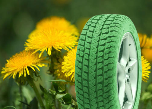 Tire Rubber from Dandelions? We Didn't See That Coming.