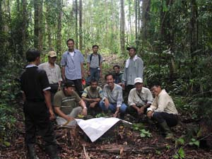 Tropical Forest Foundation