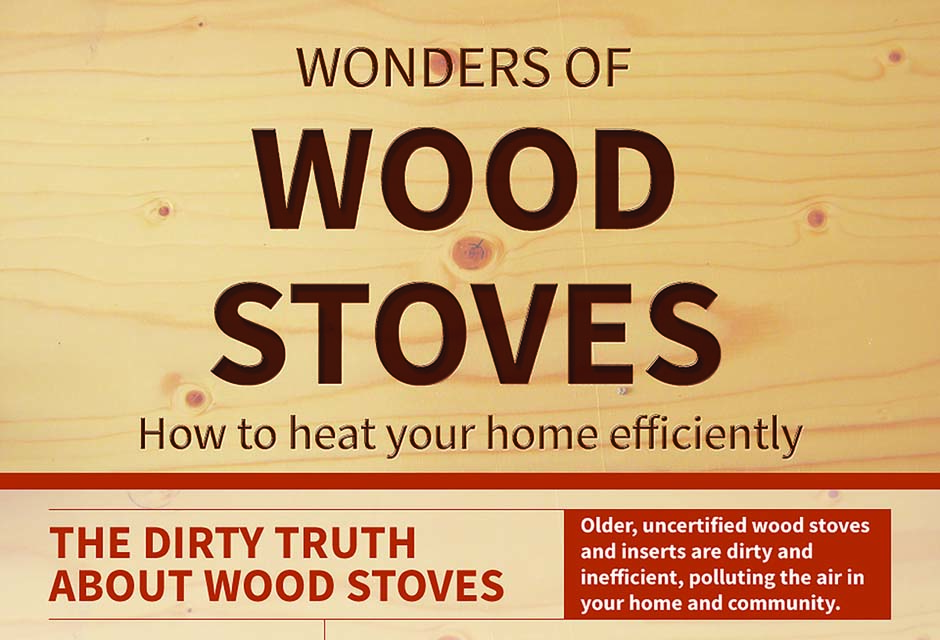 Wood Stove Infographic