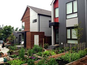 Holistic Homes