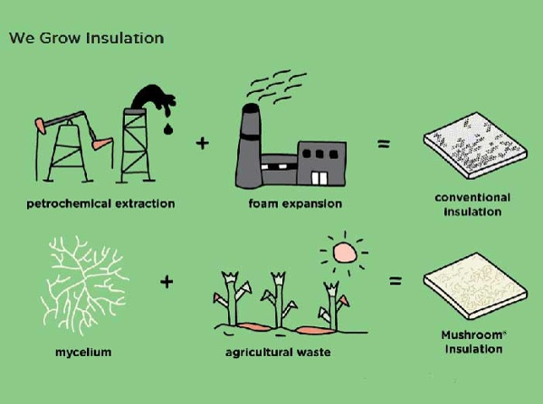 Ecovative Insulation