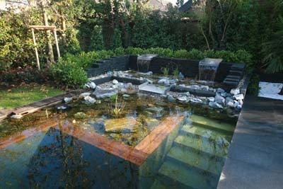 Natural Swimming Pools Work Best In Warm Climates
