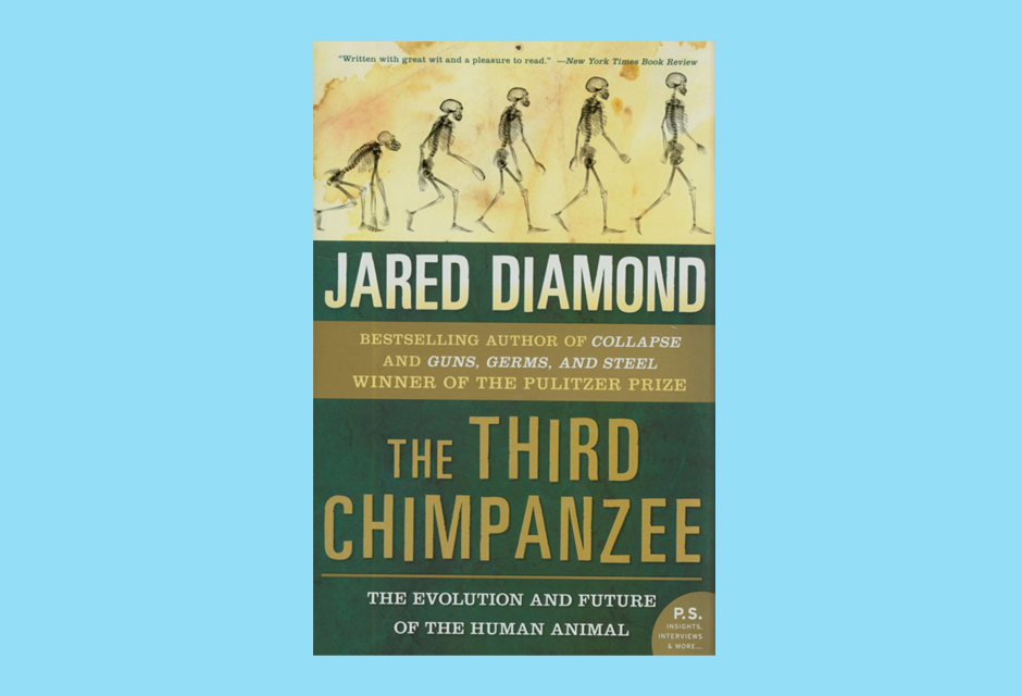 Third Chimpanzee Book