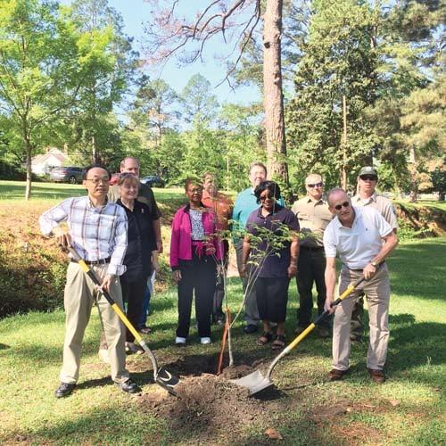 YKK AP Tree Planting-300-web