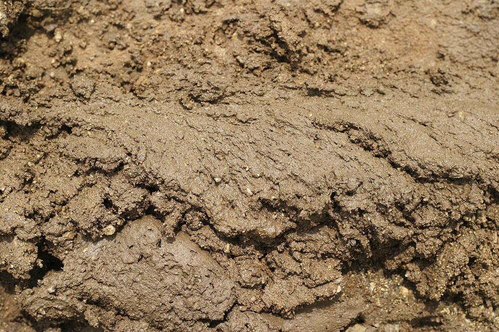 dirt-and-mud-5-texture_zyJrIsB_