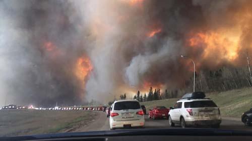 Wildfire by Wikimedia