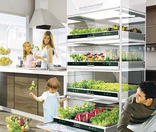 kitchen-nano-garden