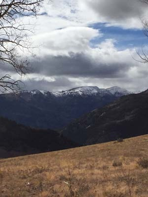 Mariposa_Meadows_1015.jpg