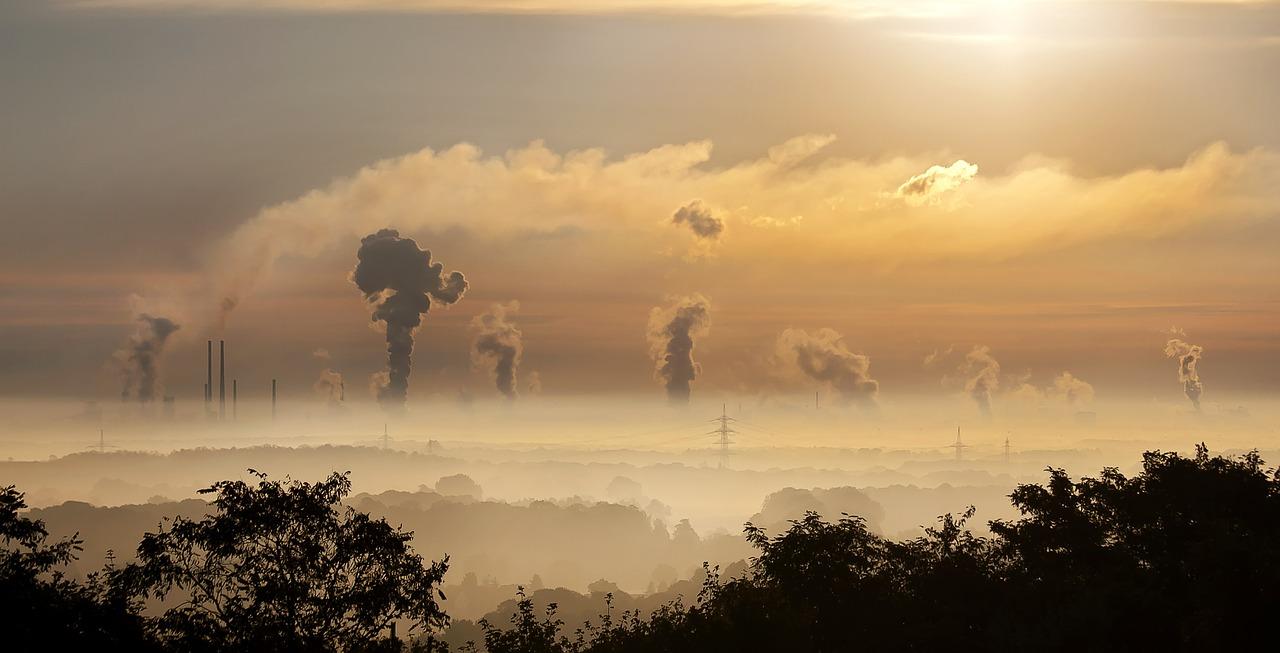 Scott Pruitt denies carbon emissions cause climate change