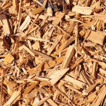 Articles and news about the latest equipment, research and tips on using biomass to generate heat and electricity