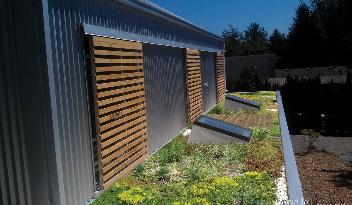Birch_House_Green_Roof
