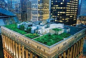 Green Roofs are Becoming a Red-Hot Way to Promote Sustainable Development