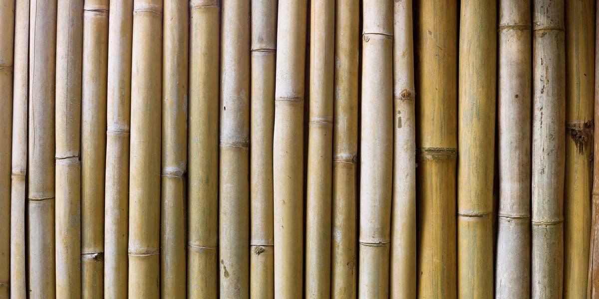 Modular Bamboo