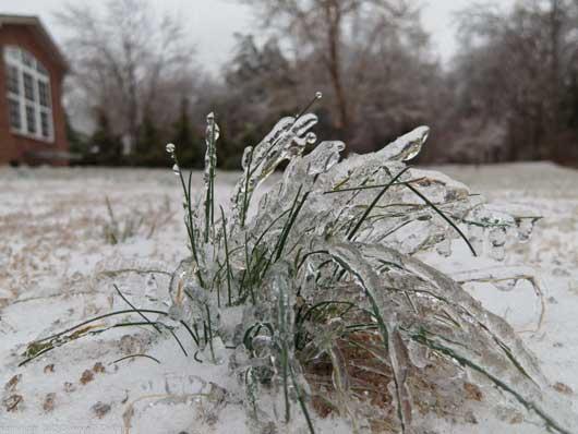 Tennessee-Ice.jpg