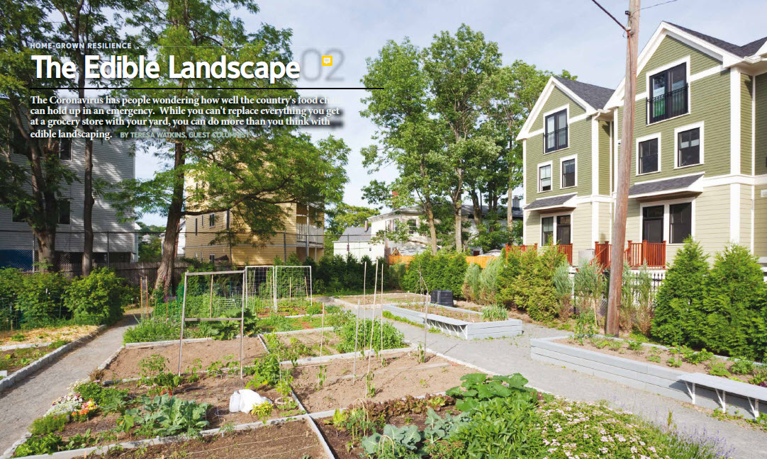 Edible Landscape example