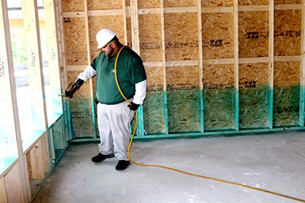 Borate-Based Termite Treatment Offers Less Toxic Approach to Southern Resilience