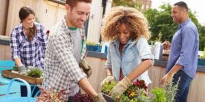 Seeking A Garden-Friendly City? Here's the List.