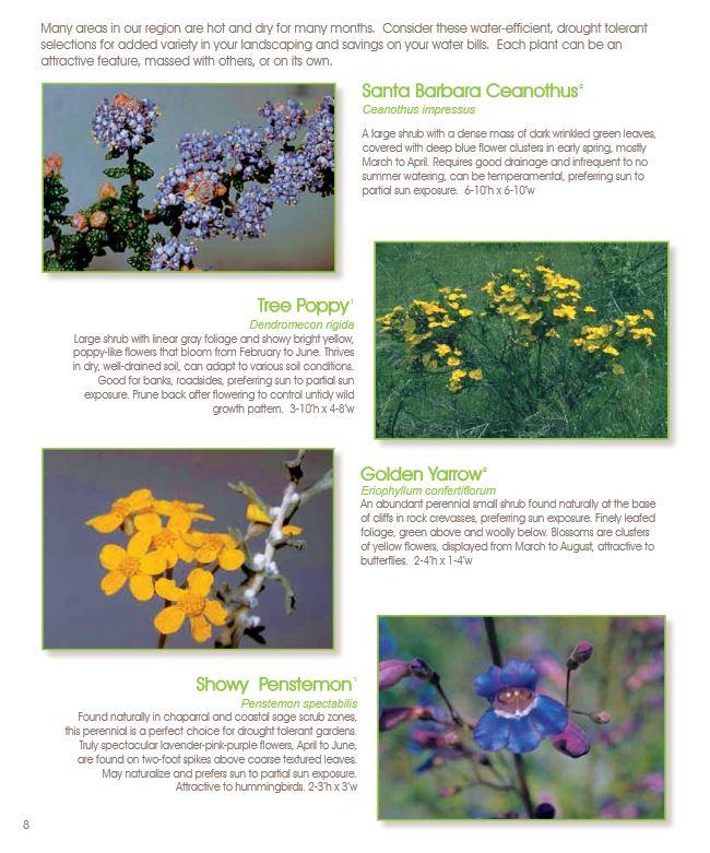 California_Plants