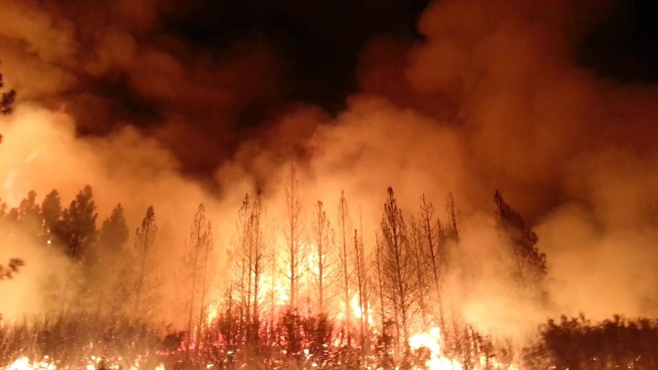 Wildfire Made Worse by Global CO2 Levels and Planetary Heating